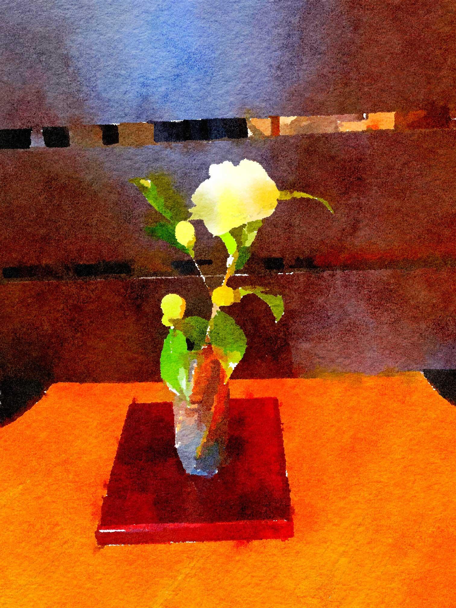 花による癒し和み